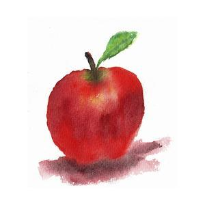 Red Apple by Wolf Heart Illustrations