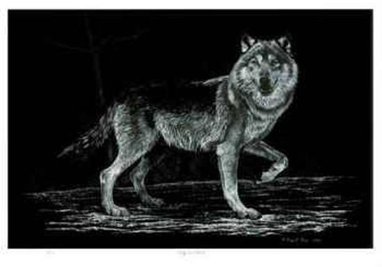 Wolf on Alert-Robert Pow-Limited Edition