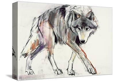 Wolf-Mark Adlington-Stretched Canvas Print