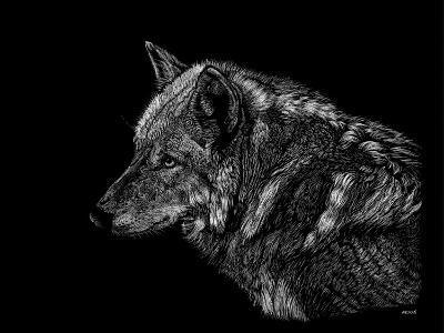 Wolf-Geraldine Aikman-Giclee Print