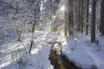 In the Ammer in Winter with Ice and Snow