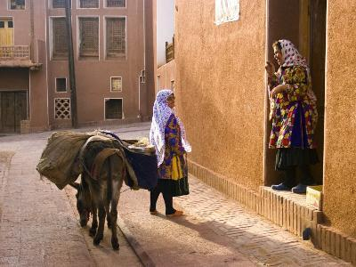 Woman and Her Donkey, Abyaneh Near Kashan, Isfahan Province, Iran-Michele Falzone-Photographic Print