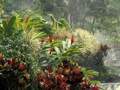 Woman at Tabacon Hot Springs near Arenal Volcano, Costa Rica-Stuart Westmoreland-Photographic Print