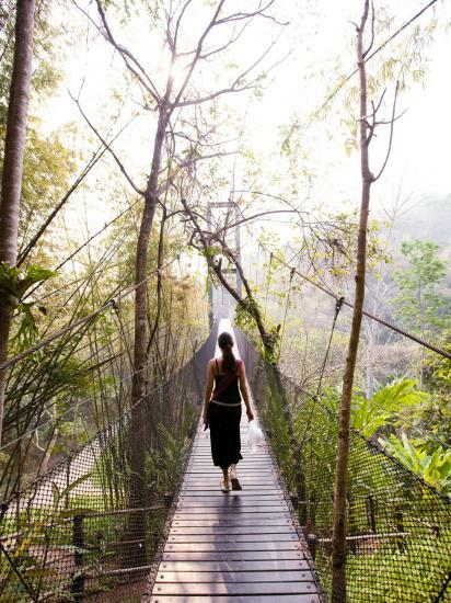 Woman Crossing Bridge Between Lobby and Accomodation Area at Four Seasons Tented Camp-Felix Hug-Photographic Print