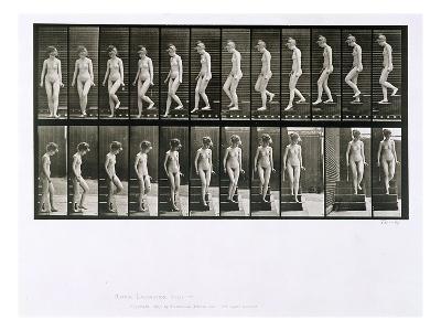 Woman Descending Steps, Plate 137 from 'Animal Locomotion', 1887 (B/W Photo)-Eadweard Muybridge-Giclee Print