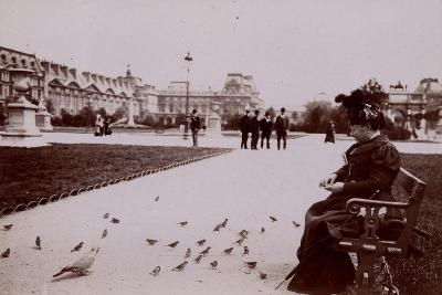 Woman Feeding Birds in the Jardin Des Tuileries--Photographic Print
