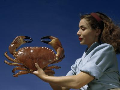 Woman Holds a Crab Caught in the Bay of Biscay-Luis Marden-Photographic Print