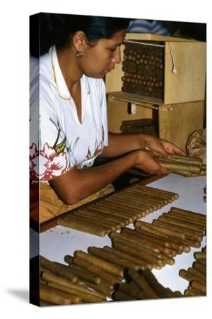 Woman Placing Cigars in a Box for Exportation, Santa Rosa De Copan, Honduras