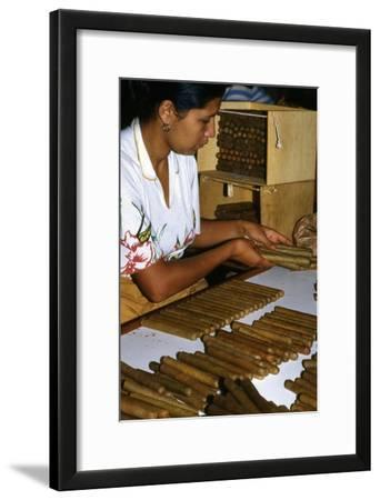 Woman Placing Cigars in a Box for Exportation, Santa Rosa De Copan, Honduras