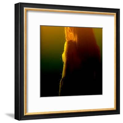 Woman Revelation VI-Jean-François Dupuis-Framed Art Print