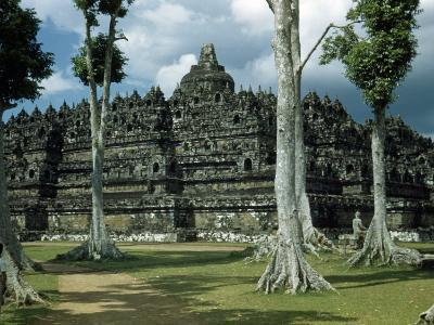 Woman Stands in Shade Beside Tall Trees Near Borobudur Temple-W^ Robert Moore-Photographic Print