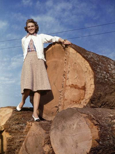 Woman Stands on a Pile of Gigantic Douglas Fir Logs-Maynard Owen Williams-Photographic Print