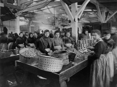 Women Canning Oysters--Photographic Print