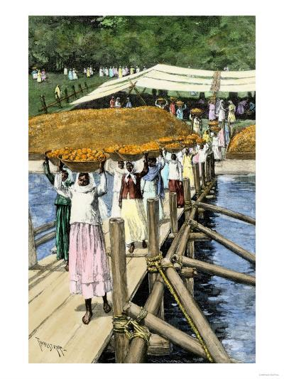 Women Loading Oranges on a Ship at San Antonio, Paraguay, c.1890--Giclee Print