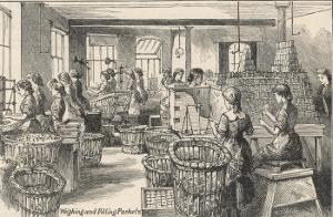 Women Weighing Chocolate and Filling Packets in the Fry's Chocolate Factory in Bristol