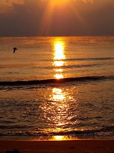 Bulgaria Sunrise Holiday by Wonderful Dream