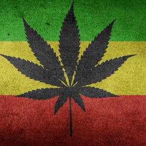Cannabis Marijuana by Wonderful Dream