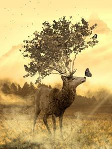 Fantasy Deer Animal by Wonderful Dream