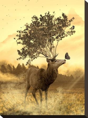 Fantasy Deer Animal