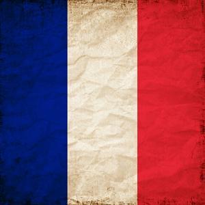 France Paris Flag by Wonderful Dream