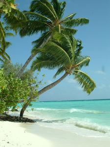 Maldives Beach Travel Holiday by Wonderful Dream