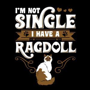Ragdoll Cat Pet by Wonderful Dream
