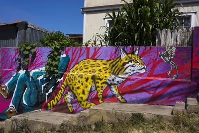 Wonderful Graffiti, Valparaiso, Chile-Peter Groenendijk-Photographic Print