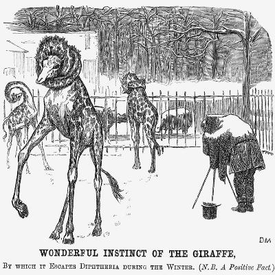 Wonderful Instinct of the Giraffe, 1865-George Du Maurier-Giclee Print