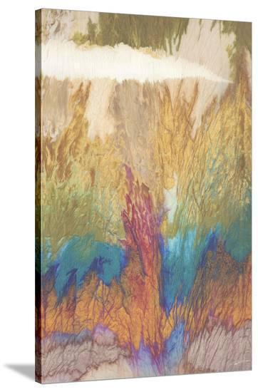 Wonderland I-John Butler-Stretched Canvas Print
