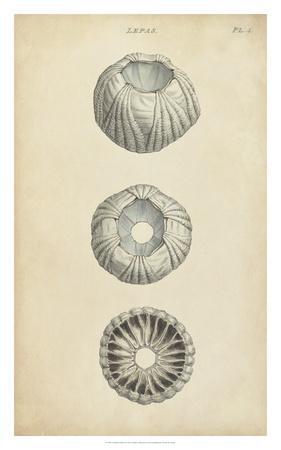 Cylindrical Shells I