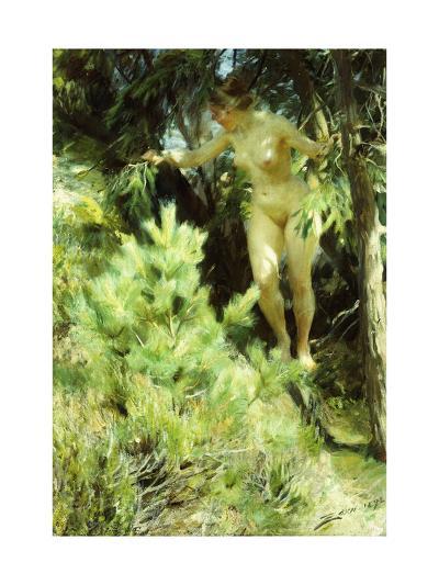 Wood-Sprite-Anders Leonard Zorn-Giclee Print