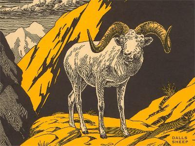 Woodcut of Dalls Sheep--Art Print