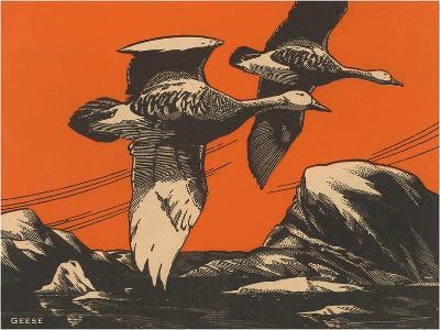 Woodcut of Geese--Art Print