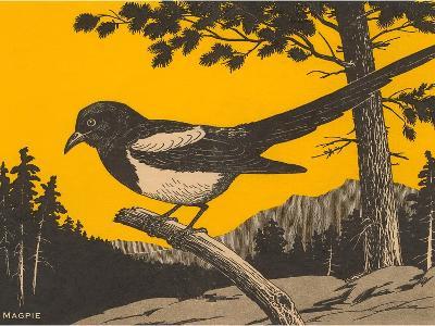 Woodcut of Magpie--Art Print