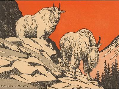 Woodcut of Mountain Goats--Art Print
