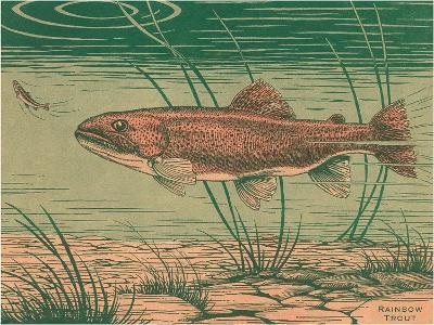 Woodcut of Rainbow Trout--Art Print