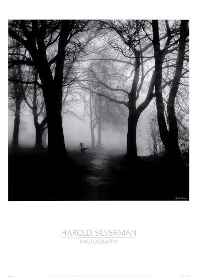 Wooded Bench-Harold Silverman-Art Print