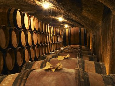 Wooden Barrels with Aging Wine in Cellar, Domaine E Guigal, Ampuis, Cote Rotie, Rhone, France-Per Karlsson-Photographic Print