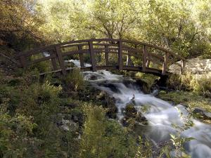 Wooden Bridge Over a Flowing Stream