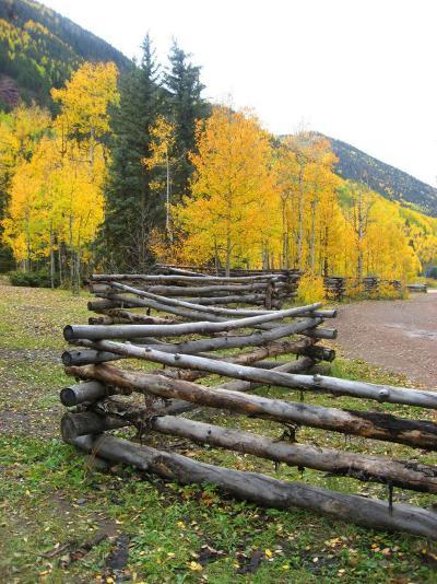 Wooden Fence in the Mountains of Colorado-David Edwards-Photographic Print