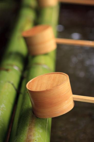 Wooden Ladles at the Entrance to the Kasuga-Taisha Shrine in Nara, Japan-Paul Dymond-Photographic Print