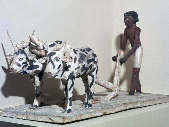 Wooden model of a man ploughing with oxen, from Egypt, Middle Kingdom, c2040-1750 BC-Unknown-Giclee Print