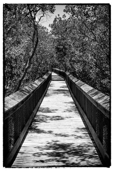 Wooden Path in the middle of a Forest in Florida-Philippe Hugonnard-Photographic Print