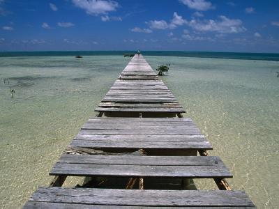 Wooden Pier with Broken Planks, Ambergris Caye, Belize-Doug McKinlay-Photographic Print