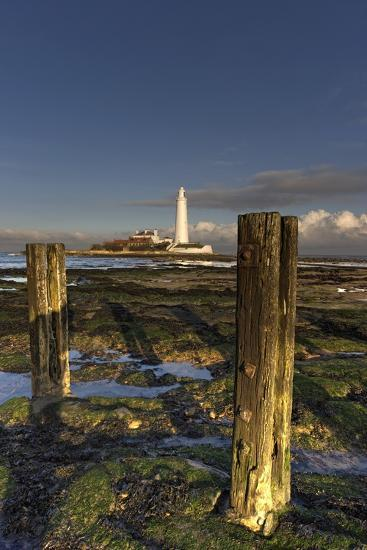Wooden Posts and Lighthouse in Distance; Whitley Bay, Northumberland, England-Design Pics Inc-Photographic Print