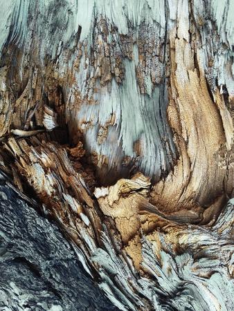 https://imgc.artprintimages.com/img/print/wooden_u-l-q1g65u70.jpg?p=0