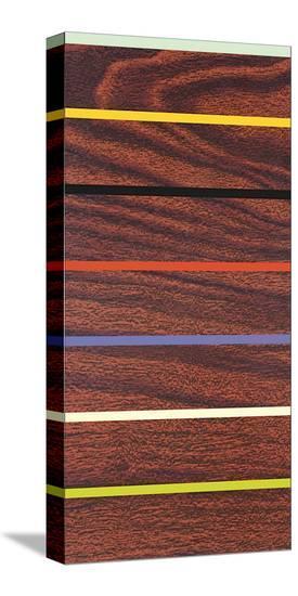 Woodgrain and Stripe-Dan Bleier-Stretched Canvas Print