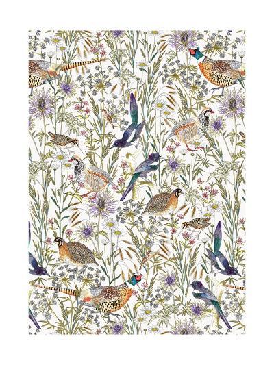 Woodland Edge Birds-Jacqueline Colley-Giclee Print