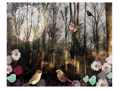 https://imgc.artprintimages.com/img/print/woodland-moon_u-l-f8n2d80.jpg?artPerspective=n