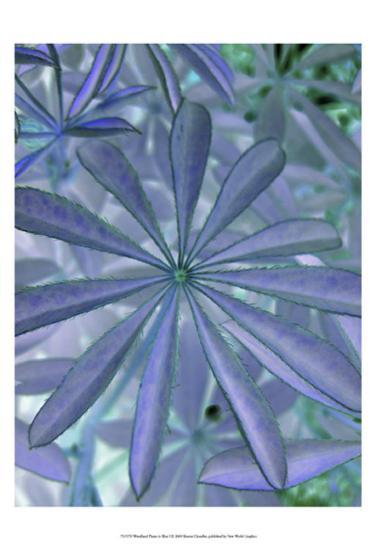 Woodland Plants in Blue I-Sharon Chandler-Art Print